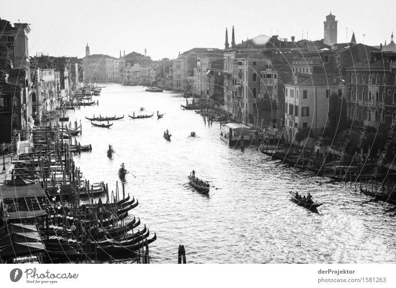 Canale Grande in sw Ferien & Urlaub & Reisen Stadt Sommer Tourismus Zufriedenheit Wellen Ausflug Insel Lebensfreude Italien Wahrzeichen Denkmal Sehenswürdigkeit