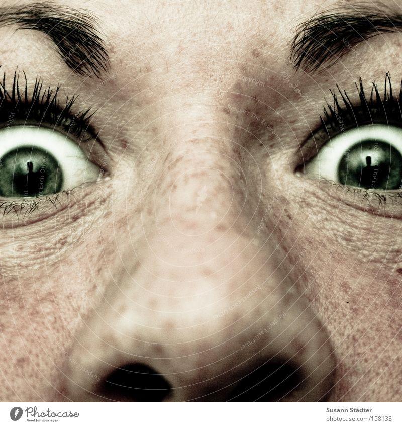 Buswartehäuschen Nase Auge grün Falte Hautfalten Sommersprossen Nasensekret Augenbraue Wimpern Schminken Tusche Heiratsantrag Wut böse Nasenloch Wange