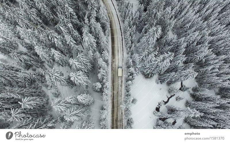 Luftaufnahme eines verschneiten Waldes mit hohen Kiefern und Straße mit einem Auto im Winter Schnee Berge u. Gebirge Natur Landschaft Baum PKW Fluggerät frieren