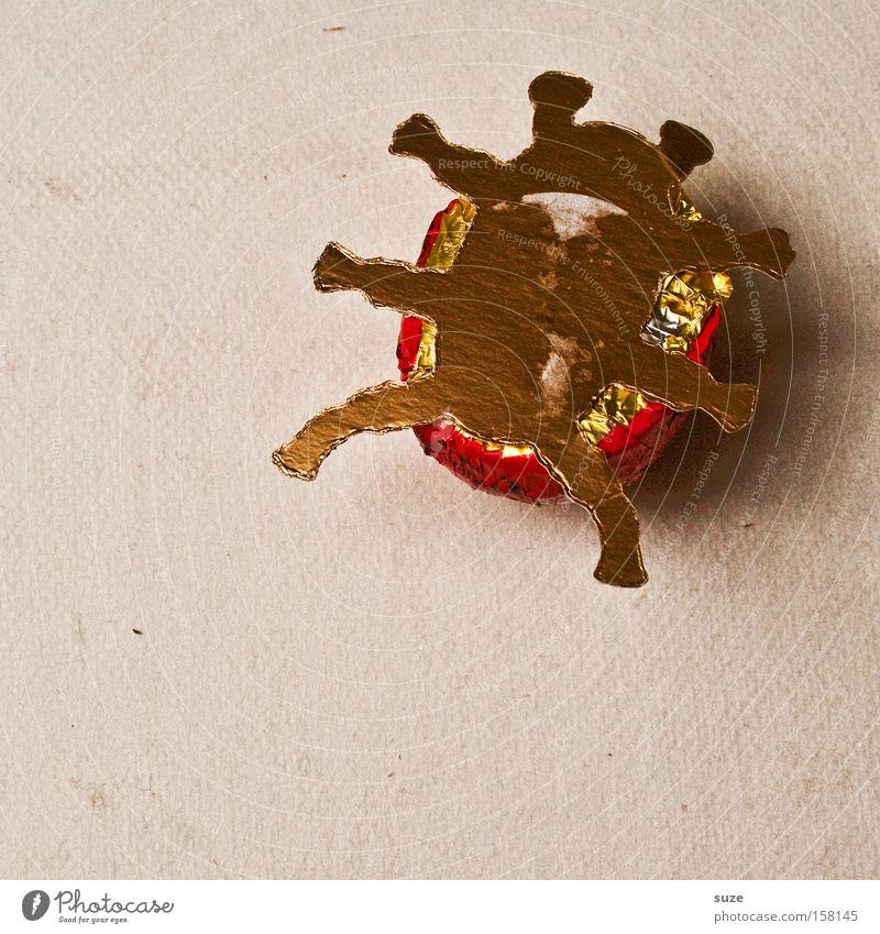 Rückenlage Lebensmittel Ernährung Kreativität Idee süß Süßwaren bewegungslos Dessert Schokolade Diät Käfer Fasten Hilfsbedürftig Vegetarische Ernährung