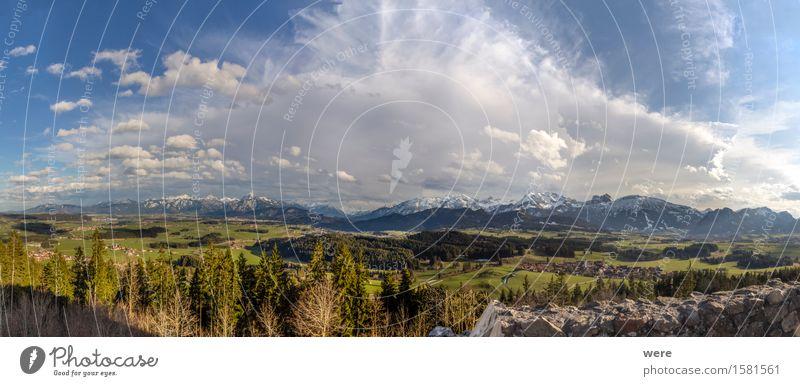 Burgruine mit Ausblick Natur Ferien & Urlaub & Reisen Pflanze Wolken ruhig Ferne Wald Berge u. Gebirge See Alpen Panorama (Bildformat) Fernweh Teich Tourist
