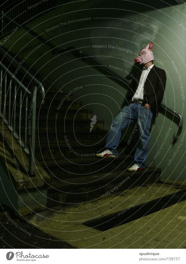 ...mal reden. Mann Tier Erholung lachen Treppe Körperhaltung Maske Verkehrswege Säugetier Hausschwein Nacht Humor Schwein Sau