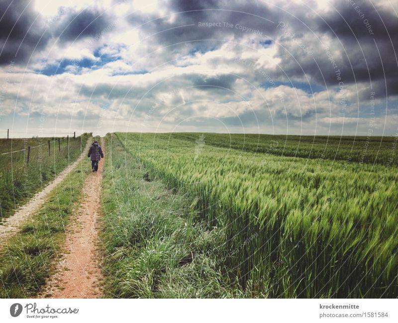 rider on the storm Mensch Frau Himmel Natur Mann blau Pflanze grün Landschaft Einsamkeit Wolken Erwachsene Umwelt Wiese grau Freiheit