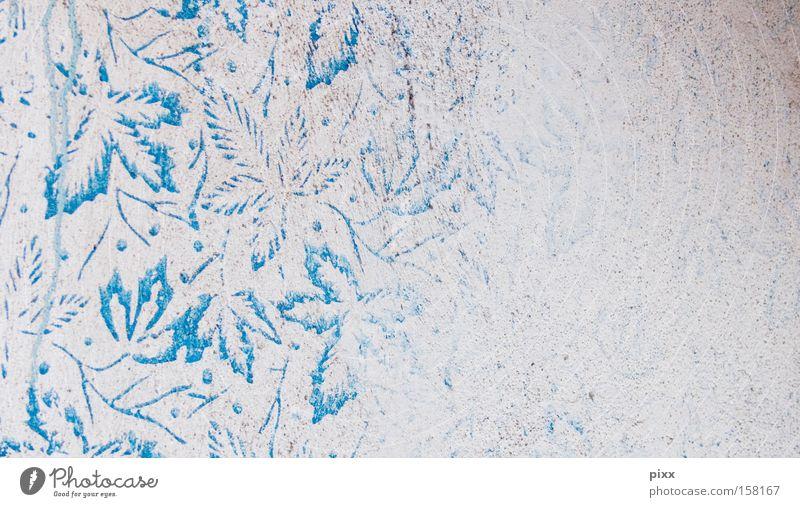 Rankhilfe Blatt Farbe Wand Raum Muster Kunst Design Ordnung Dekoration & Verzierung Vergänglichkeit türkis gestalten Ahorn Kunsthandwerk Schablone