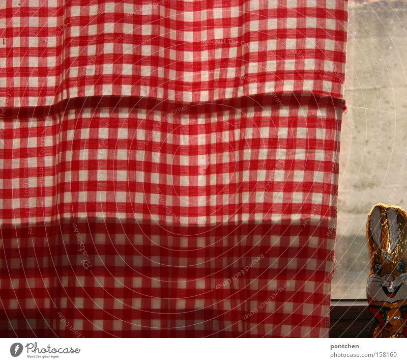 Schokoladenosterhase auf einem Fensterbrett neben rot-weißer Gardine Süßwaren Häusliches Leben einrichten Dekoration & Verzierung Ostern Handel Verpackung