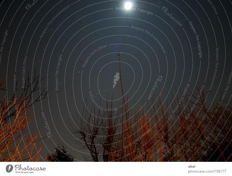 Moonlight Abenddämmerung Nacht Mond Himmelszelt Himmelskörper & Weltall Sternenzelt Satellit Halbmond Langzeitbelichtung Kraft luna Baumstruktur Sternenhimmel
