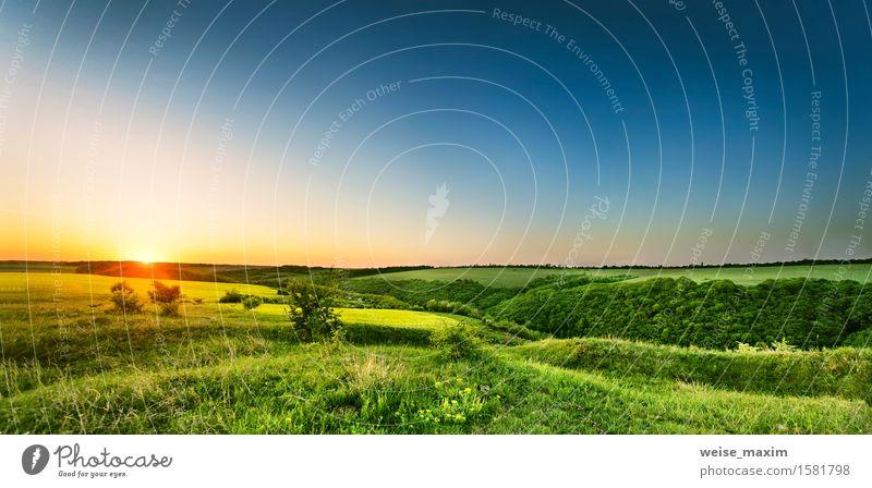 Frühlingssonnenaufgang in den Hügeln von Podolien Himmel Natur blau grün schön Sommer Baum Sonne Landschaft gelb Wärme Wiese Wege & Pfade Gras hell