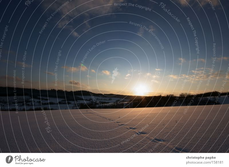 Spuren im Schnee Farbfoto Außenaufnahme Menschenleer Textfreiraum oben Abend Dämmerung Sonnenstrahlen Sonnenaufgang Sonnenuntergang Zentralperspektive Winter