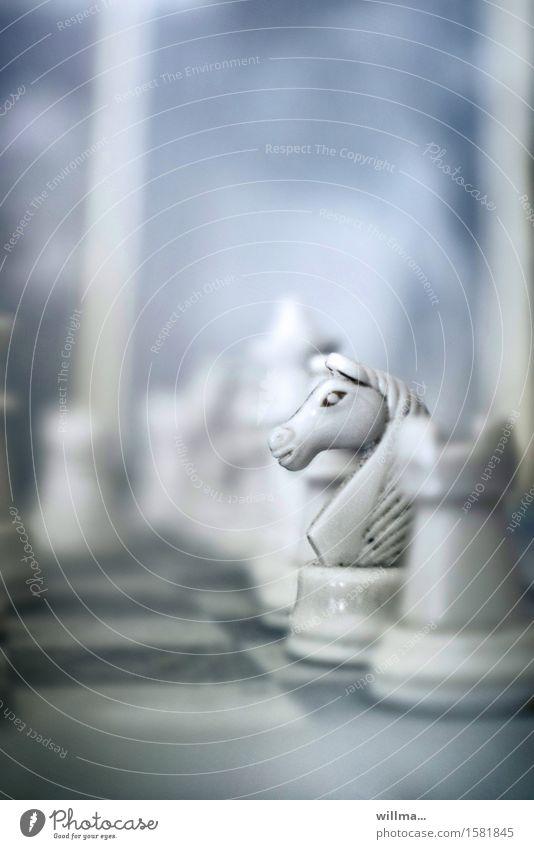 'zum weißen rössl' Freizeit & Hobby Spielen Brettspiel Schach Konzentration planen Springer Pferd Schachfigur Rösselsprung Elfenbein Schachbrett Springinsfeld