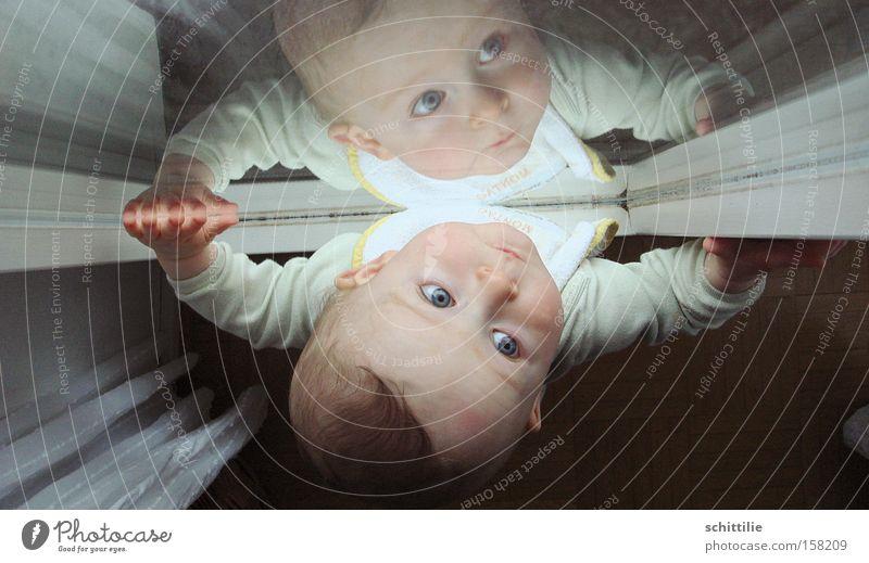 Mal sehen wie das Wetter so wird ... Gesicht Spiegel Kind Baby Kleinkind Mädchen Junge Auge Mund Hand 1 Mensch 0-12 Monate Fenster Tür Blick authentisch Schutz