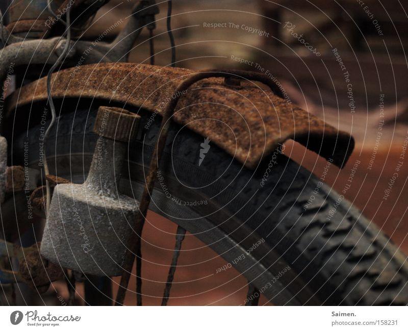 Korrosion Rost Fahrrad Reifen alt Reifenprofil Schutzblech Energie Vergänglichkeit verfallen Dynamo