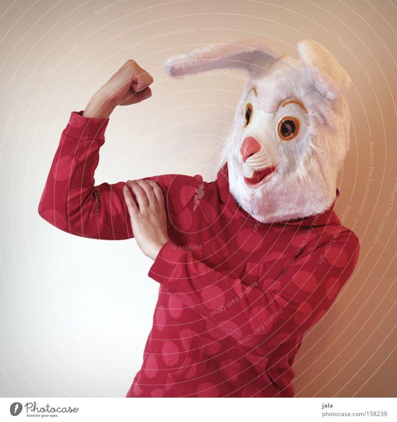 Power-Hase Hase & Kaninchen Osterhase Ostern Karneval verkleiden Tier weiß lustig stark Frau Maske Kostüm Kraft Freude Mensch