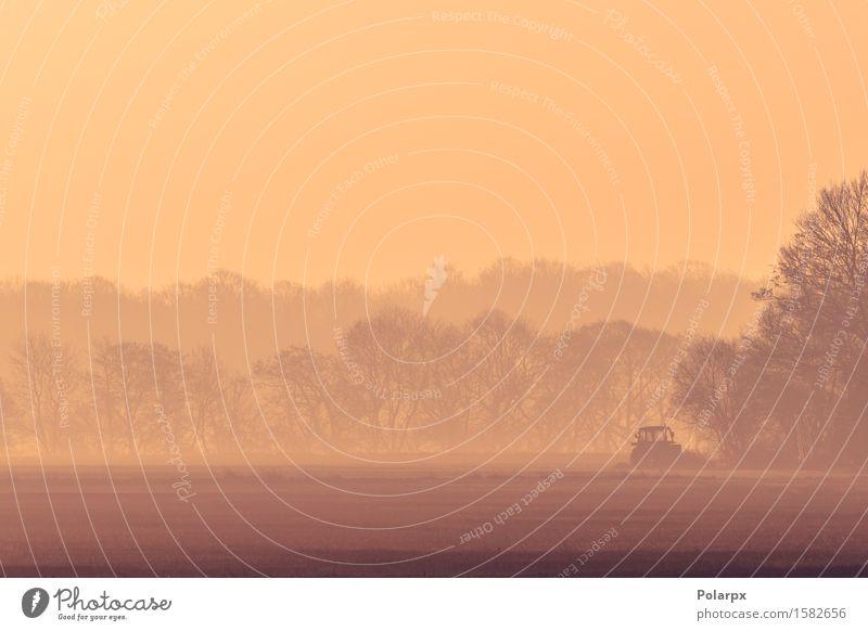 Nebligen Morgen mit einem Traktor auf einem Feld schön Leben Sonne Arbeit & Erwerbstätigkeit Industrie Maschine Umwelt Natur Landschaft Erde Herbst Nebel Wiese
