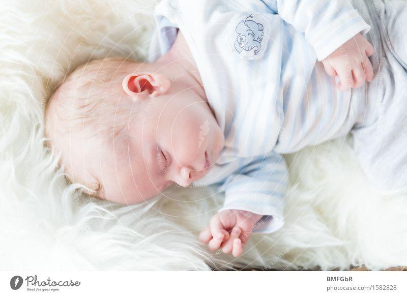 Süße Träume Mensch Baby Familie & Verwandtschaft Leben 1 0-12 Monate liegen schlafen träumen klein niedlich weich weiß Gefühle Glück Zufriedenheit Lebensfreude