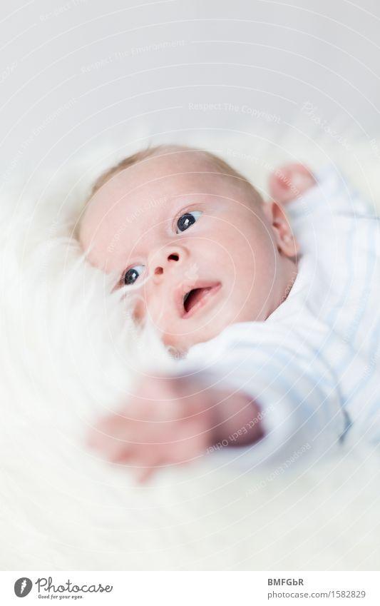 Haben will.... Glück Mensch maskulin Kind Baby Kleinkind Kindheit Leben 1 0-12 Monate liegen kuschlig klein positiv weiß Gefühle Fröhlichkeit Zufriedenheit