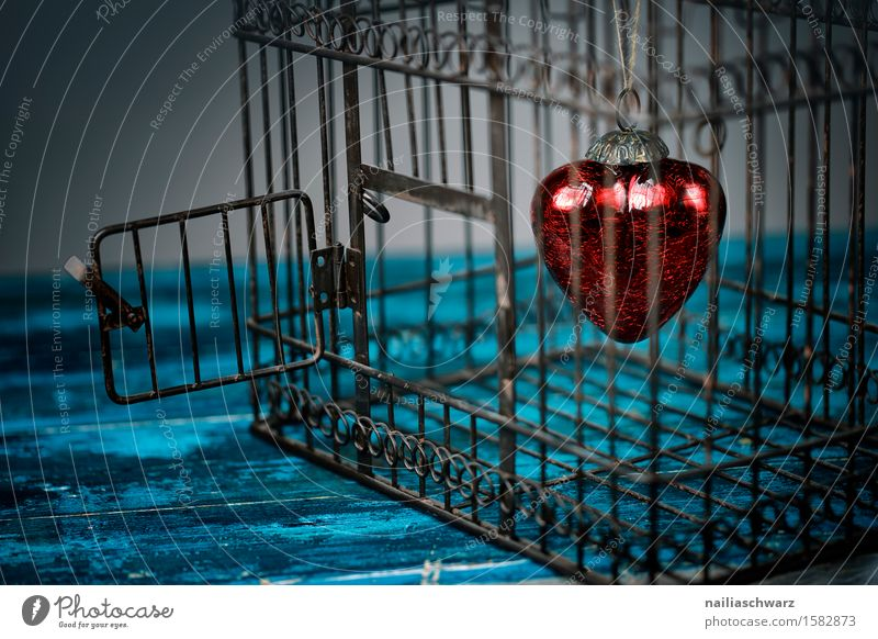 Rote Herzen Valentinstag Käfig Holz Rost Liebe dunkel retro blau rot türkis Treue Reinheit Glaube Traurigkeit Trauer Liebeskummer Sehnsucht Partnerschaft Farbe