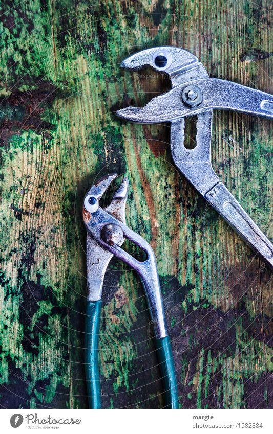 Höre gut zu! Zwei Zangen mit Augen auf einem alten Holztisch Beruf Handwerker Arbeitsplatz Baustelle Dienstleistungsgewerbe Werkzeug Schere Tier 2 sprechen
