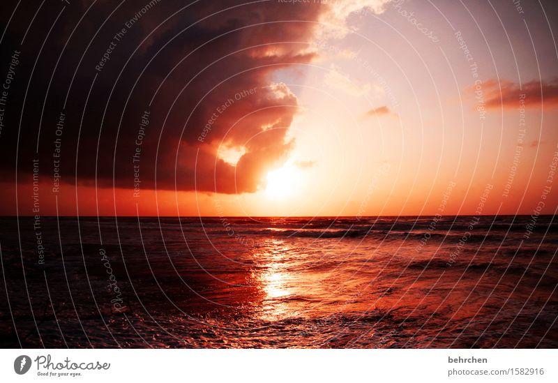 traumwelt Himmel Ferien & Urlaub & Reisen schön Sommer Meer Landschaft Wolken Ferne Strand Küste außergewöhnlich Freiheit Horizont orange träumen Tourismus
