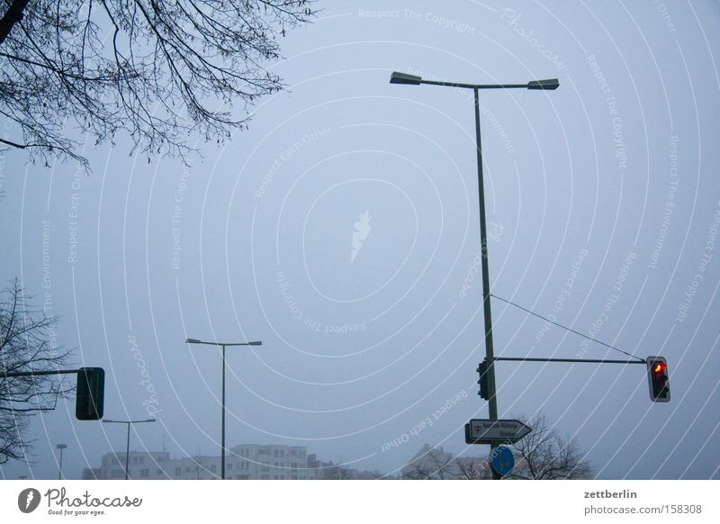 Ampeln und Laternen Herbst Traurigkeit Beleuchtung Nebel Verkehr Verkehrswege Straßenbeleuchtung November trüb Verkehrszeichen