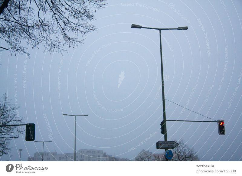 Ampeln und Laternen Herbst Traurigkeit Beleuchtung Nebel Verkehr Laterne Verkehrswege Straßenbeleuchtung Ampel November trüb Verkehrszeichen