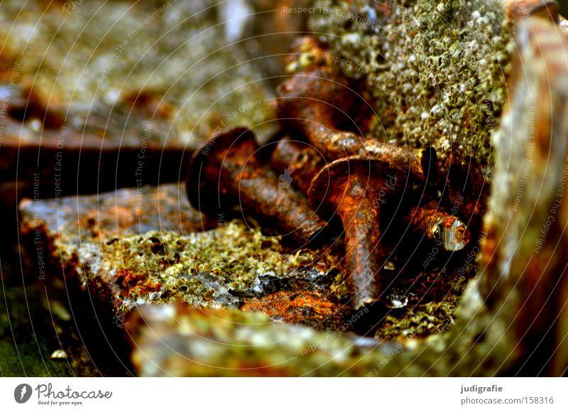 Sylt alt Schraube Niete Rost Verbindung maritim Eisen Farbe Handwerk Vergänglichkeit