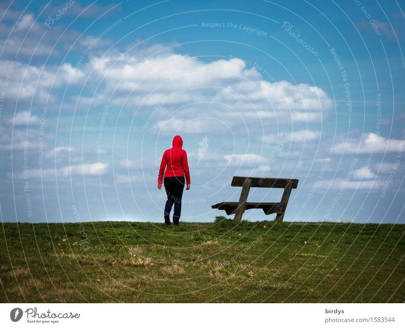 vorausschauend Lifestyle Freizeit & Hobby feminin 1 Mensch 30-45 Jahre Erwachsene 45-60 Jahre Himmel Horizont Wiese Kapuzenpullover Bank Parkbank Blick stehen