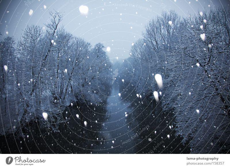 winterwonderland Schnee Schneefall Schneeflocke Winter Schneelandschaft Fluss Flussufer Baum Eis kalt erstarren Landschaft Bach
