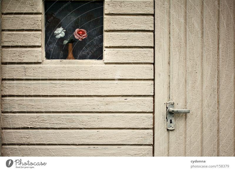 Gartenlaube Nostalgie Ostalgie Gardine Fenster Blume Kitsch Gartenhaus Zeit Vergänglichkeit Kunststoff stagnierend Romantik Kunstblume Dekoration & Verzierung