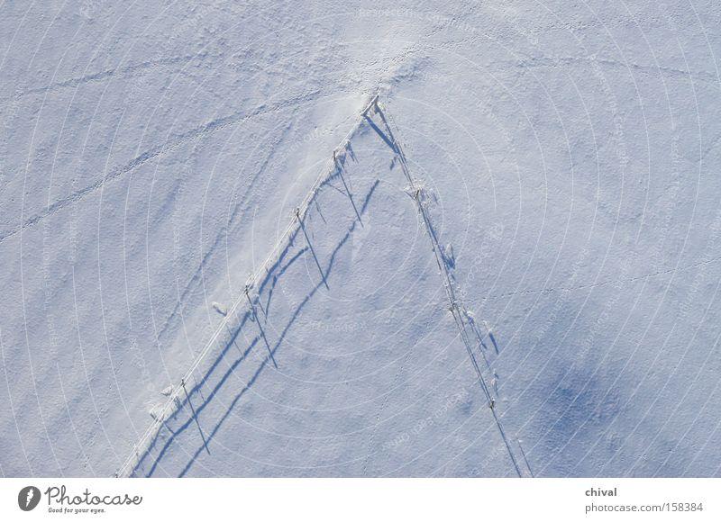 Spuren im Schnee Winter Baum Schatten Wiese Licht kalt Vogelperspektive Kontrast Rätsel Freizeit & Hobby