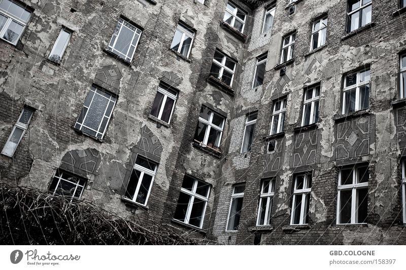 Das Fenster zu Hof Einsamkeit Bruchbude verfallen Verfall grau trist Hinterhof Haus Armut Renovieren Modernisierung verwittert alt Fassade Trauer Verzweiflung