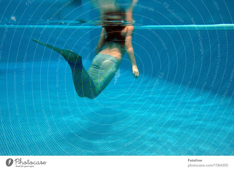 Die kleine Meerjungfrau - oder ein junges Mädchen schwimmt mit einer Flosse im Pool Mensch feminin Kindheit Haare & Frisuren Arme Hand 1 Urelemente Wasser