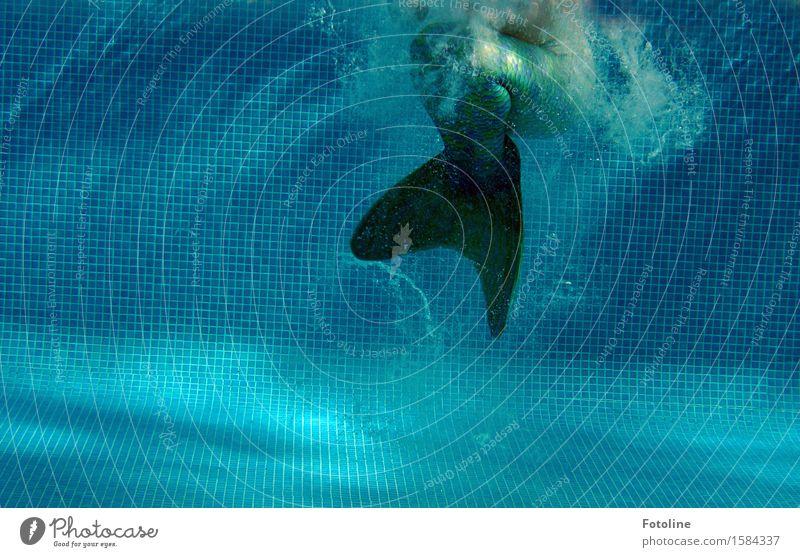 Unterwasserwelt feminin Mädchen Junge Frau Jugendliche 1 Mensch Urelemente Wasser Sommer hell nass natürlich blau grün Meerjungfrau Flosse Luftblase