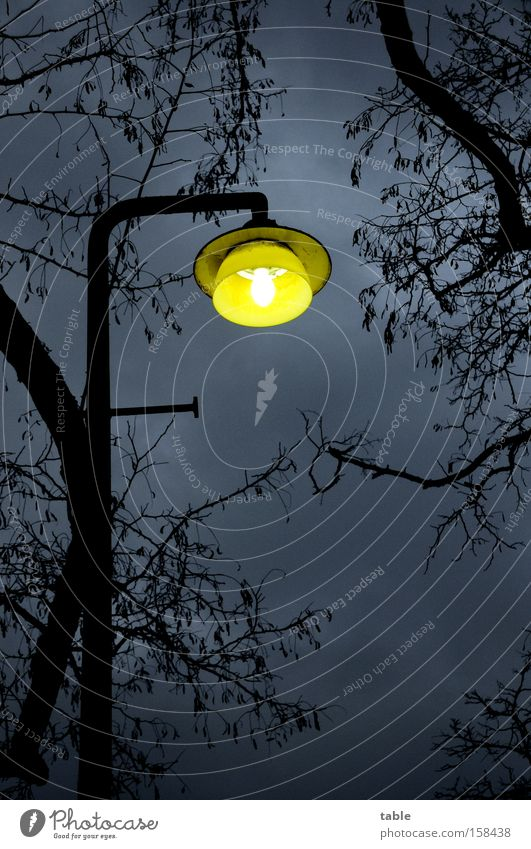 Erleuchtung Laterne Lampe Baum Ast Unwetter Wetter Abend Nacht Winter Licht Beleuchtung Fußgänger Sicherheit Bürgersteig Fußweg laufen fahren Verkehrswege