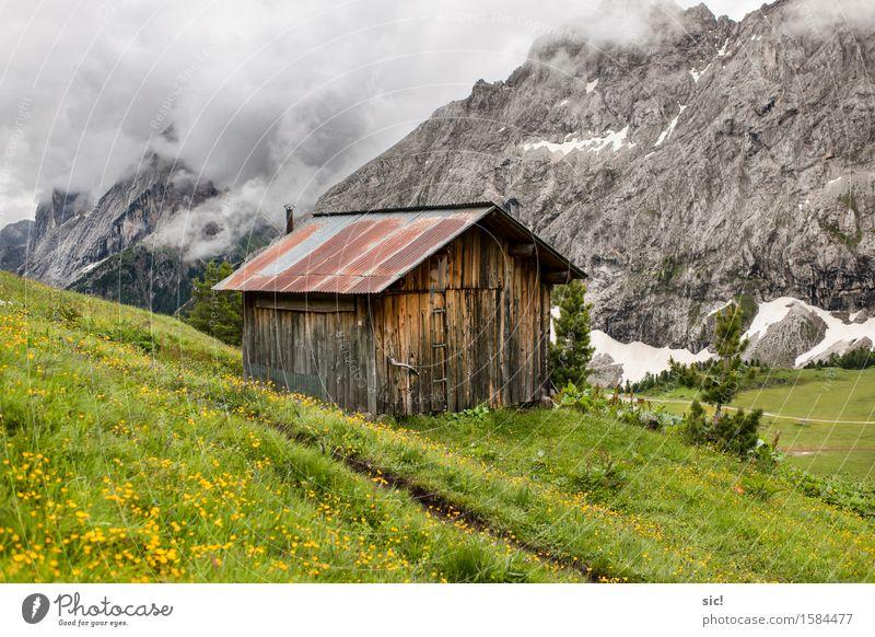 Schutzhütte Natur Ferien & Urlaub & Reisen Pflanze grün Landschaft Wolken Berge u. Gebirge Umwelt Wiese Holz grau Felsen Tourismus Wetter wandern Ausflug