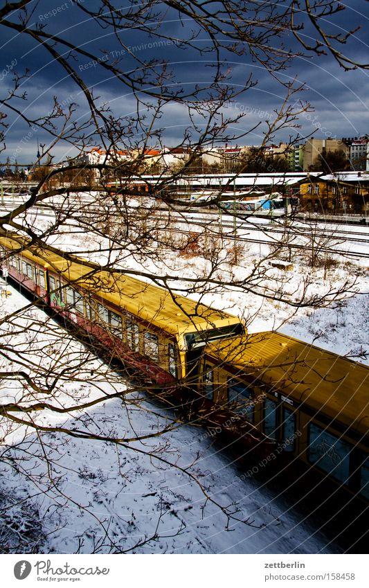 Berliner Winter Schnee Horizont Verkehr Eisenbahn Güterverkehr & Logistik Gleise Skyline S-Bahn Versorgung Öffentlicher Personennahverkehr Schneedecke