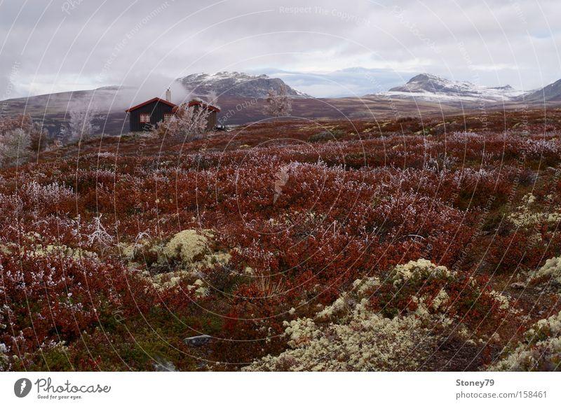 Morgenfrost in Rondane Himmel Natur Wolken ruhig Einsamkeit Haus Ferne Herbst kalt Landschaft Freiheit Berge u. Gebirge Gras Eis Europa Frost