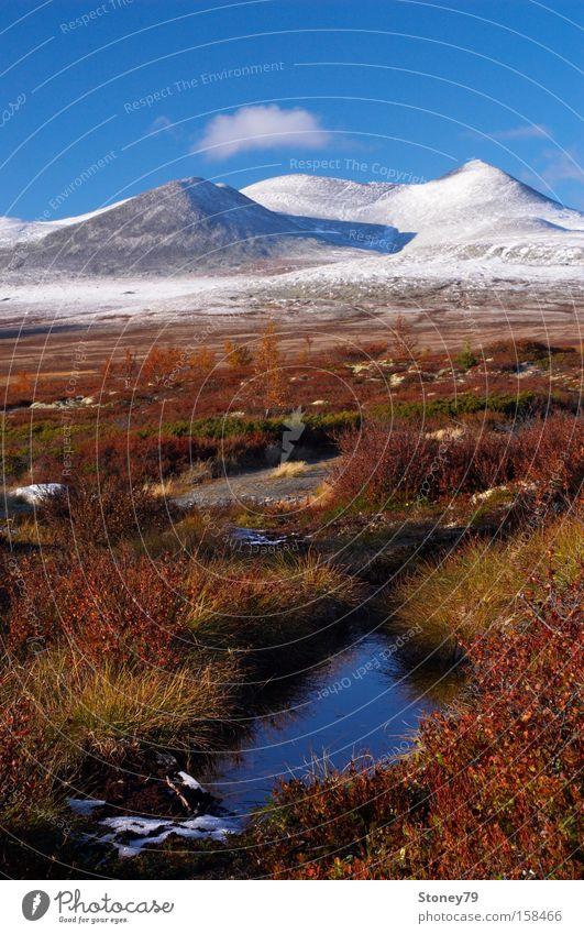 Indian Summer in Rondane Ferne Schnee Berge u. Gebirge Natur Landschaft Himmel Herbst Schönes Wetter Teich blau braun mehrfarbig rot weiß ruhig Einsamkeit