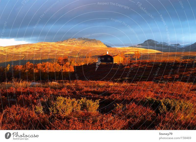Morgenstimmung in Rondane Himmel Natur rot Wolken ruhig Einsamkeit Haus Ferne Herbst Landschaft Freiheit Berge u. Gebirge Horizont gold Europa Sträucher