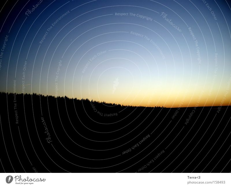 Im Osten geht die Sonne auf Himmel blau rot schwarz Wald Wetter Sonnenaufgang Morgen Sonnenuntergang Morgendämmerung Abenddämmerung Abendsonne