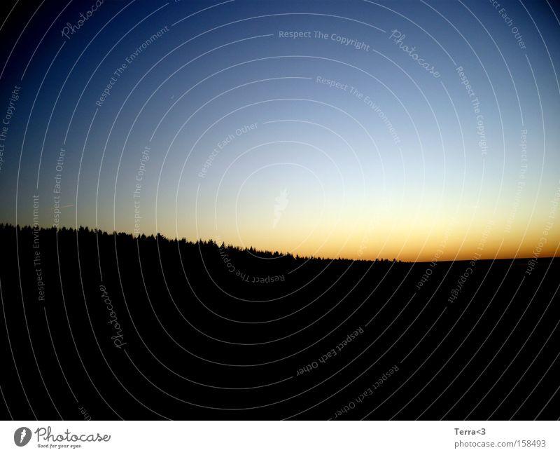 Im Osten geht die Sonne auf Himmel Sonne blau rot schwarz Wald Wetter Sonnenaufgang Morgen Sonnenuntergang Morgendämmerung Abenddämmerung Abendsonne