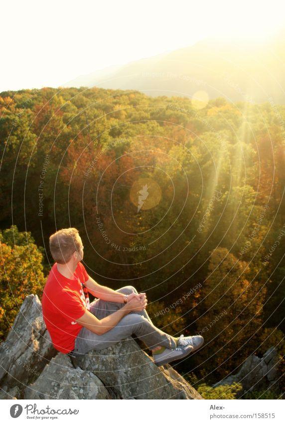 Bergfest Sonne Sommer Wald Erholung Herbst Berge u. Gebirge Felsen sitzen USA T-Shirt Kanada Amerika genießen Virginia Richmond Charlottesville