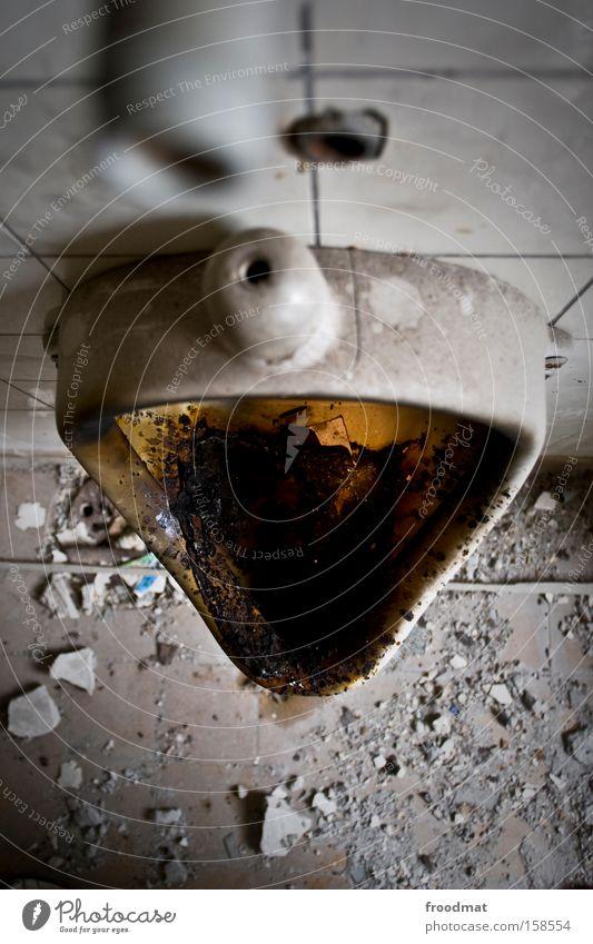 missverständnis dreckig Sauberkeit Bad verfallen Kot Toilette Verfall obskur Geruch Ekel falsch Staub Körperpflegeutensilien Pissoir