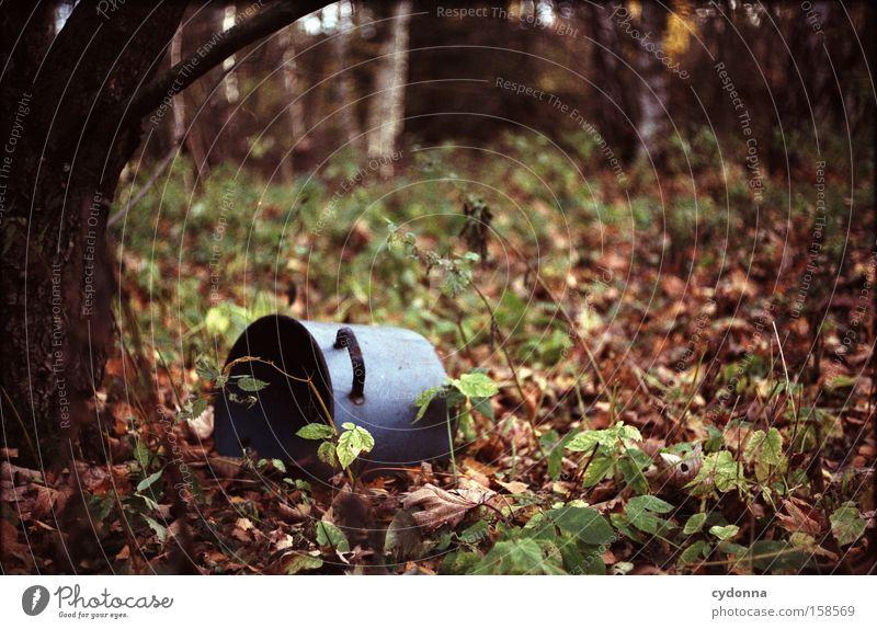 Vergessen Natur alt Blatt Wald Umwelt einfach Müll Vergänglichkeit verfallen obskur verstecken falsch Topf Umweltschutz Schrott Verhalten
