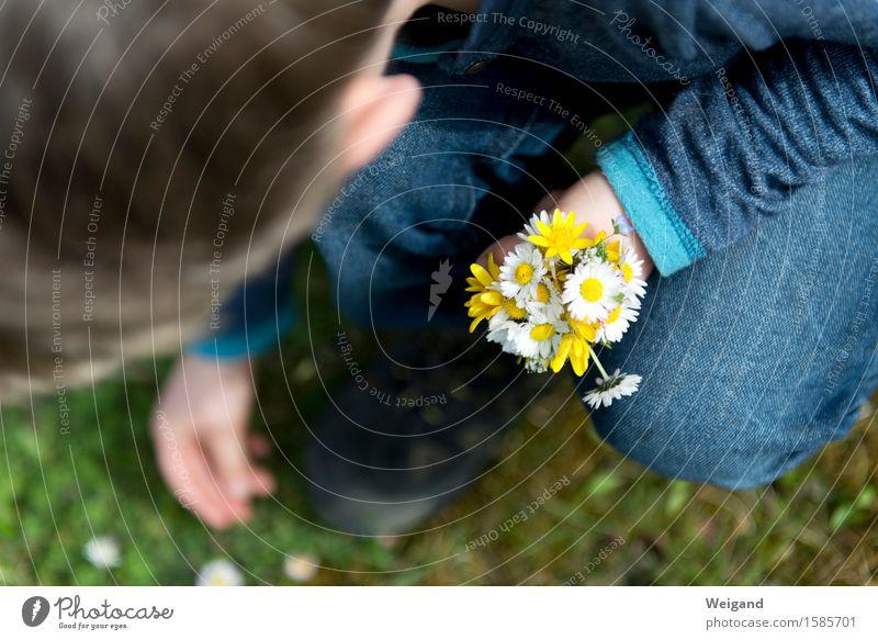 Muttertag & Co Kind Hand Blume Freude Mädchen natürlich Junge Glück Feste & Feiern Geburtstag Kindheit Lebensfreude Geschenk Ostern Blumenstrauß harmonisch