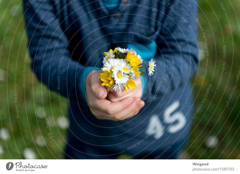 Muttertag & Co Picknick Glück Garten Kindererziehung Kleinkind Mädchen Junge 3-8 Jahre Kindheit Frühling Sommer Duft Liebe schön Zufriedenheit Lebensfreude