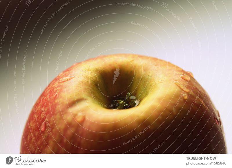 morgenfrisch! Lebensmittel Frucht Apfel Ernährung Bioprodukte Vegetarische Ernährung Natur Essen Gesundheit lecker natürlich sauer süß gelb grau grün orange rot