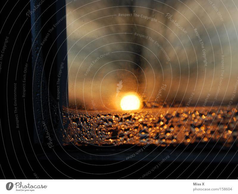 Sonnenaufgang Farbfoto Morgen Morgendämmerung Abend Dämmerung Licht Sonnenuntergang Winter Wasser Wassertropfen Wetter Fenster Tropfen Hoffnung Müdigkeit