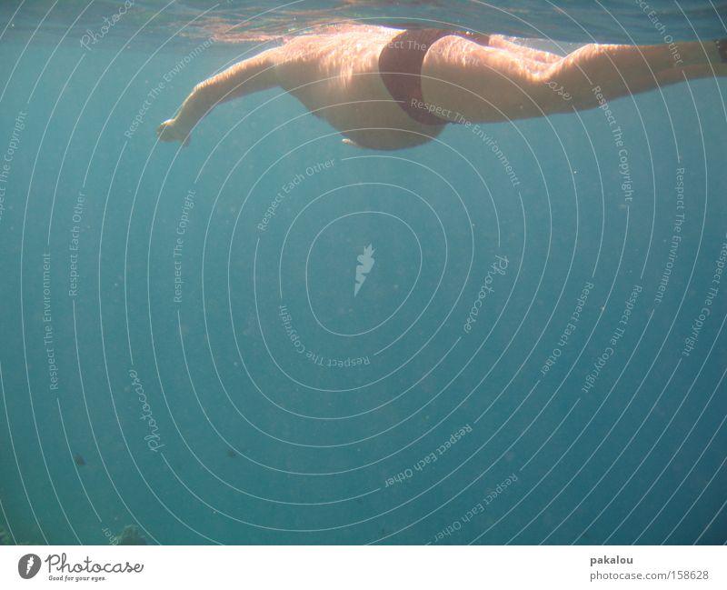 catch me if you can Mann blau Wasser Ferien & Urlaub & Reisen Meer Erwachsene Schwimmen & Baden einzeln tauchen Übergewicht dick Bauch Wasseroberfläche