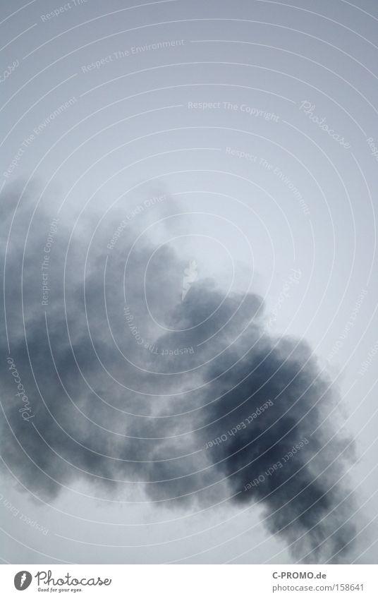 smoke on the sky Himmel blau Nebel Brand gefährlich Vergänglichkeit Rauch Abgas brennen Umweltschutz Kohlendioxid Klimaschutz