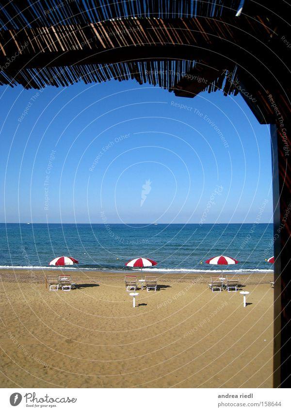a schöne Aussicht Meer Sand Muschel Sonnenschirm Ferien & Urlaub & Reisen erholsam spaßig Toskana Florenz Pisa Siena Strand Küste Italien Gelati